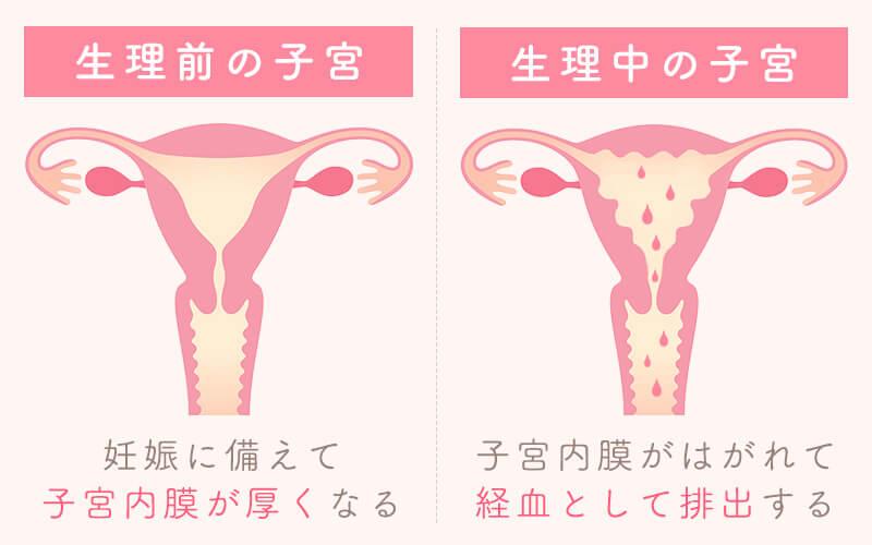 陰性だけど生理こない 生理がこないのに陰性…|赤ちゃんがほしい|妊娠・出産・育児に関する総合情報サイト【ベビカム】